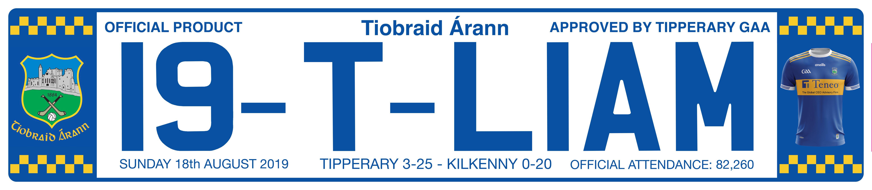 19-T-LIAM Number Plate Distributors